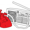 Share The Love: Celebrate 40 years of RTRFM this Radiothon