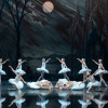 St Petersburg Ballet Theatre will bring 'Swan Lake' to Perth in 2018