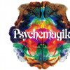 Psychemagik To Play Sets on the Beach