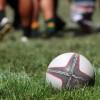 Organisations Unite Against Homophobia in Sport