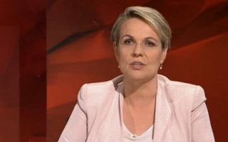 Tanya Plibersek Dismisses Senator Dean Smith's Concerns