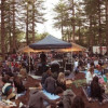 RTRFM announce some of the bands appearing at 'In the Pines' 2019