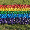 Pride flag made of potatoes appears at Parliament House