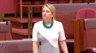 WA Senator Louise Pratt delivers emotional speech against plebiscite