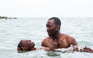 Moonlight wins six Independent Spirit awards