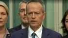 Bill Shorten says he'll actively campaign for a YES vote