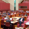 Senate votes against amendments to Smith marriage bill