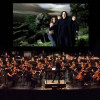 The magical music of Harry Potter is back, live in concert