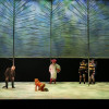 Review | The Cunning Little Vixen is hilarious but flawed