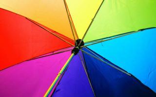 Report highlights impact of marriage debate on CALD LGBTIQ+ communities