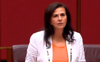 Senator Fierravanti-Wells says call to protect LGBTI students was a furphy
