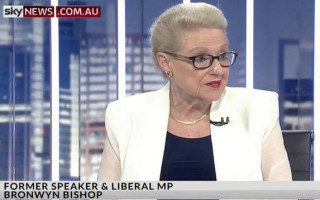 Bronwyn Bishop suggests Labor will fund drag story time
