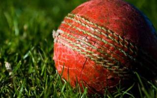 ACON praises Cricket Australia's trans inclusion policy