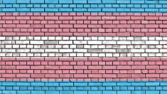 First survey of trans & gender diverse sexual health reveals major gaps