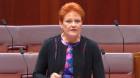 "Pauline Hanson says educators promoting ""gender confusion"""