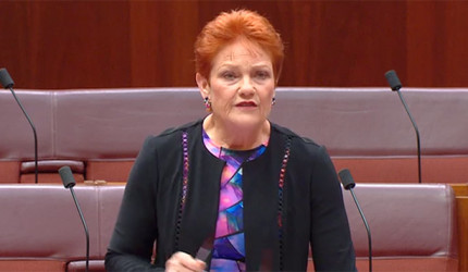 Pauline Hanson voices her opposition to recognising intersex people