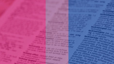 Bi The Book: Definitions & bisexuality in 2020