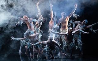 'Firestarter' charts the success and tragedies of Bangarra Dance Theatre