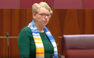 Greens' call to protect the rights of LGBTIQ+ people voted down