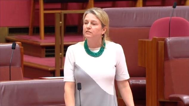 louise pratt parliament